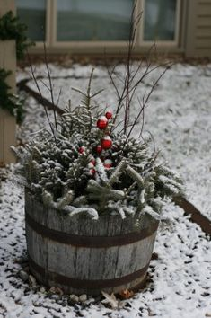 whiskey barrel planter for winter