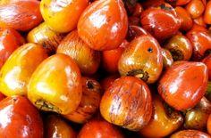 Chontaduro, fruta del Pacífico colombiano