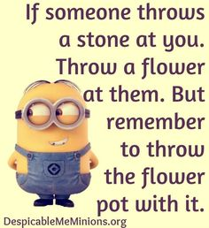 Hahahahhahahahahahahaha...Make sure you don't miss either. #Minions #Flowers