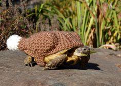Tortoise cosies