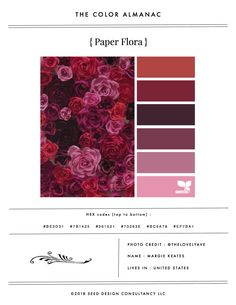 Color Almanac vol. vi