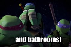 Lol! I love Raph's and Donnie's faces.But Leo's is my fave,it's so funny and cute at the same time!