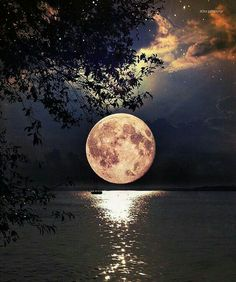 that's a amazing moon and photo. Full Moon in Singapore! Photography by Moon Pictures, Pretty Pictures, Cool Photos, Moon Images, Amazing Photos, Beautiful Moon, Beautiful Places, Wonderful Places, Beautiful Scenery