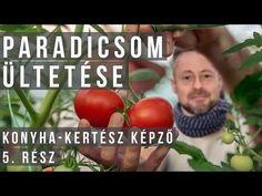 Hogyan és mivel ültess paradicsomot? / Konyha-Kertész Képző #5 - YouTube Vegetables, Garden, Youtube, Garten, Lawn And Garden, Vegetable Recipes, Gardens, Gardening, Outdoor