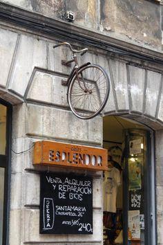 tienda y reparacion de bicicletas en gijon | Escarabajos, Bichos y Mariposas