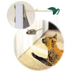 Play-N-Squeak Batting Practice Cat Toy « Pet Lovers Ads