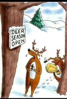Deer pranks