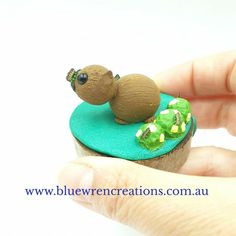 There's no denying that Australian native animals are adorable. Jo from Blue Wren Creations in Tasmania loves sculpting adorable whimsical miniature Australian native animals and botanical earrings. Follow along on Facebook or Instagram for cute updates, or pop over to the website to see what's currently available. Polymer Clay Sculptures, Polymer Clay Art, Australian Animals, Australian Art, Wombat, Wren, Tasmania, Sculpting, Whimsical
