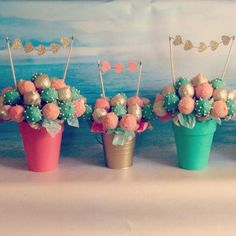 Cake pops in flower pots with banners