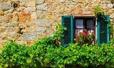 geranium flowers: Ventana italiana con Open persianas de madera, decorado con flores frescas