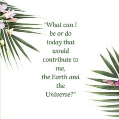 What can I be and do today that would contribute to me, to people, animals, beings of nature, the earth and the universe? Spiritual Life, Spiritual Awakening, Spiritual Quotes, Question Of The Day, This Or That Questions, Access Bars, Access Consciousness, Soulmate Love Quotes, Positive Phrases