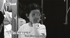 BigbangGifs: Taeyang stealing Haru's kisses on Return of Superman