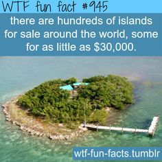privateislandsfor sale - facts  MORE OF WTF-FUN-FACTS are coming HERE  funny and weird facts ONLY