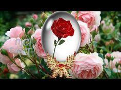 Christmas Bulbs, Floral Wreath, Happy Birthday, Table Decorations, Holiday Decor, Flowers, Youtube, Nude, Photos