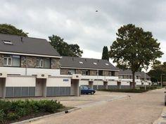 Dynois 32 natuurleien in Tilburg. Lei Import B.V.
