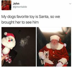 Puppy loves Santa - more at http://www.thelolempire.com