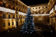 Christmas tree in Piazza of Monte Paschi di Siena
