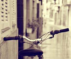 freddy's bike