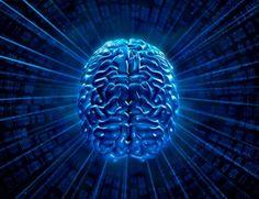 La hipotermia protege el cerebro