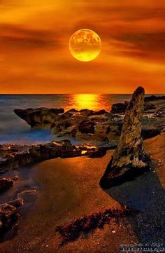 le couché du soleil à florida - landscape photography - seascape Beautiful Moon, Beautiful World, Beautiful Places, Pretty Pictures, Cool Photos, Amazing Pictures, Places Around The World, Around The Worlds, Jolie Photo