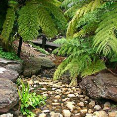 Kokoda Track, Papua New Guinea Kings Park, Papua New Guinea, Backpacking, Scary, Hiking, Tours, Australia, Adventure, World