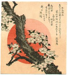 (Japan) Surimono flower by Katsushika Hokusai woodblock print. Japanese Artwork, Japanese Painting, Japanese Prints, Japan Illustration, Era Edo, Monte Fuji, Art Du Monde, Art Occidental, Katsushika Hokusai