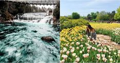 18 Secret Spots In Ontario You And Your BFF Absolutely Need To Discover This Spring featured image Nature Adventure, Adventure Awaits, Albion Falls, Places To Travel, Places To See, Ontario Travel, Toronto Travel, Canada Travel, Day Trips