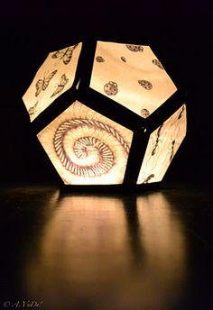 Lampion met insecten