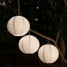 Shop for Chinese Lanterns Solar Powered LED Bulbs Pure Garden Set of Get free delivery On EVERYTHING* Overstock - Your Online Outdoor Lighting Store! Solar Path Lights, Pathway Lighting, Outdoor Lighting, Lighting Ideas, Chinese Lamps, Outdoor Hanging Lanterns, Hanging Lamps, Hanging Fabric, Led Lantern