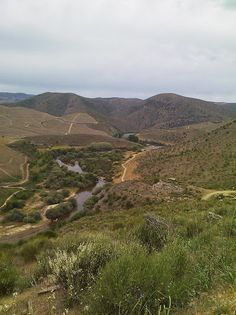 Côa Valley -Portugal