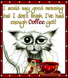 I would say good morning but I dont think i've had enough coffee yet – Humor Morning Coffee Funny, Sunday Coffee, Good Morning Funny, Coffee Is Life, Morning Humor, I Love Coffee, Best Coffee, Coffee Coffee, Ninja Coffee