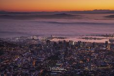 The magical moment when a city wakes up and the fog rolls in. Cape Town was looking like its old self again with lots of traffic about. Took this shot after about a 45 minutes hike up India Venster and really enjoyed the view. Snowy Weather, Snowy Day, Place To Shoot, Olympic Peninsula, Whale Watching, Nature Reserve, Wedding Humor, Animal Tattoos, Animal Design