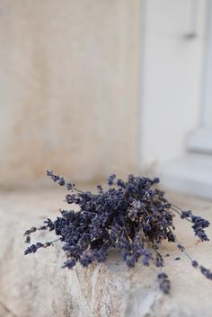 Lavender Story by the Photographer Jonny Lindh ♥ Лавандулена история от фотографа Джони Линд | 79 Ideas