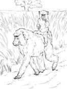 I R BABOON Cartoons We All Know And Love Pinterest Cartoon