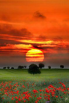 sunsurfer: Red Sunset, Tuscany photo by Nuno Milheiro Beautiful World, Beautiful Places, Simply Beautiful, Absolutely Gorgeous, Nature Landscape, Sunset Landscape, Beautiful Sunrise, Belle Photo, Amazing Nature