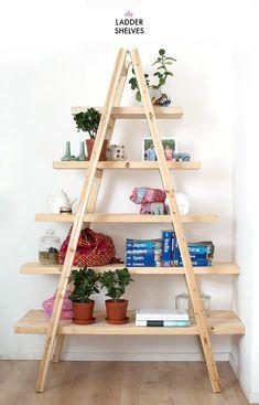 Make a quick set of shelves using a ladder http://www.apairandasparediy.com