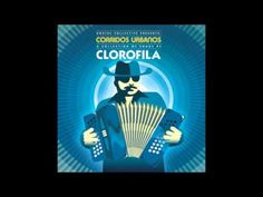 Discoteca Nacional - Clorofila ( con Mezcaleros de la Sierra, para Sesiones de Reactor ) - YouTube