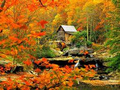 Autumn Mill. [Desktop wallpaper 1280x960]