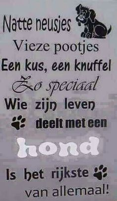 Hond Animal Quotes, Dog Quotes, Life Quotes, Dog Love, Puppy Love, Dachshund, Dog Texts, Joelle, Dutch Quotes