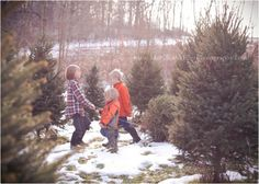 my boys getting the Christmas tree. snow photo session. child-photographer-pittsburgh. Mary Beth Miller Photography