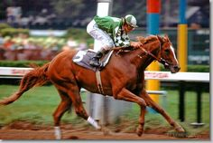General Assembly, chesnut son of Secretariat, winning the 1979 Travers Stakes (by Mark Wyville)