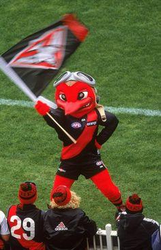 Essendon (VIC) Bombers mascot
