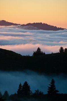 Santa Cruz Mountains by twoGiraffe, via Flickr