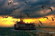 Deniz Senyesil