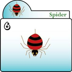 How to draw Spider Step 6