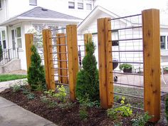 Architectural Trellis -- wood, metal rods and wire