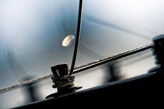 Macro Photo of Steel Guitar - Midnight Steel by Carla Dyck