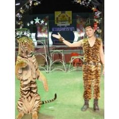 Sriracha Tiger Zoo1