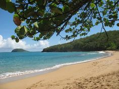 La Guadeloupe... Bientôt!! :)