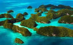 Travel With MWT The Wolf: Travel Notes   Raja Ampat Islands  Indonesia      ...